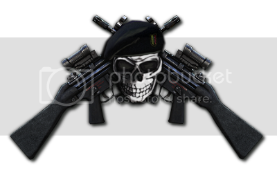 [Image: BlackSkull-Mp5-M145-250.png]